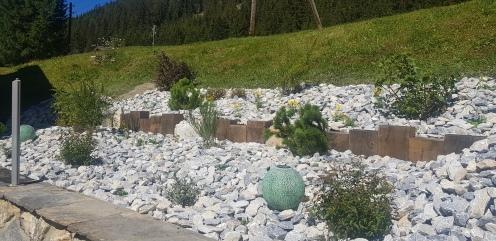 Plantation de vivaces et arbustes